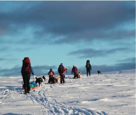 INNOVER FJELLET: En fin kolonne av folk og dyr i det gnistrende vinterfjellet. Foto: Lars Krempig