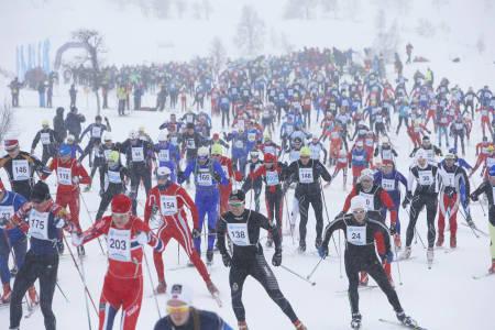 STARTEN  GÅR: Ut av snøværet kommer mer enn tusen skiløpere.