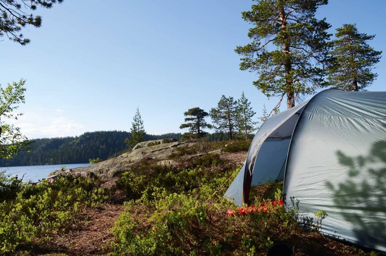 SKOGENS RO: Skrim gir deg både flott skog og høydedrag med innslag av fjell. Uansett finner du garantert roen. Foto: Sandra L. Wangberg