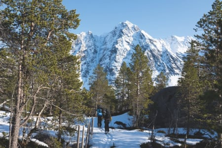 LYNGENHALVØYA - DET VILLASTE ALPINE FJELLOMRÅDET I NOREG