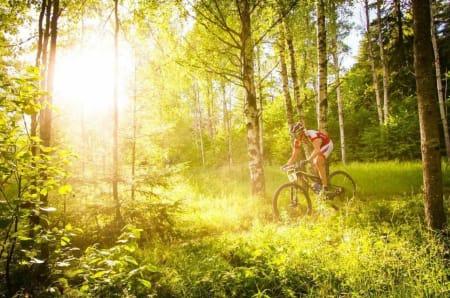 FÅ SOLA I FLEISEN: Å ta bilde mot solen kan bli riktig bra. Men pass på at motivet får korrekt eksponering. I tillegg må lukkertiden tilpasses motivets bevegelse. Lukkertid: 1/1600s. Blenderåpning: f/5,0. Lysfølsomhet: ISO 1600. Foto: Snorre Veggan
