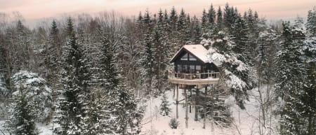 Falkeredet er en av fem spektakulære hytter i Veggeskogen ved Horten. Foto: Gunnar Bækkevold