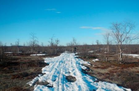 SISTE LITEN: Et skuterspor holder på snøen de siste kilometrene med ski og pulk. Foto: Ida Eri Sørbye