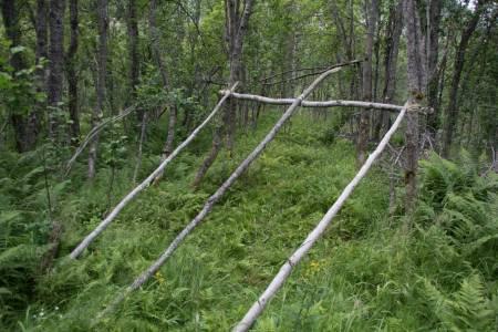 Flere lange stokker sikrer at taket ligger bedre og at gapahuken blir stødigere.
