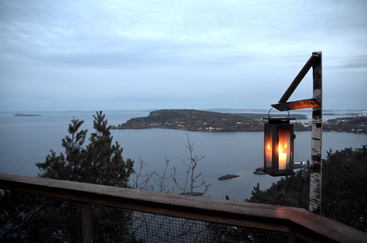 TRETOPPHYTTER I HORTEN: Høyt over Oslofjorden finner du Ugleredet, en hytte med husvarme ekorn og småfugler.