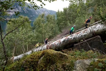 Mosekledde stener, bjørk og en vakker fjord. Ivar Aasen hadde utvilsomt snudd seg i graven om han så den rustende rørledningen, som brøyter seg gjennom det nasjonalromantiske landskapet.