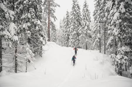 SNØKAOS  PÅ ØSTLANDET: Da er det bare å ta fram skiene. Foto: LIne Hårklau