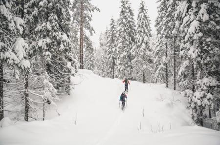 Det beste med vinteren