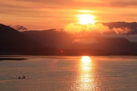 Naturen var helt enorm, men det var solnedgangene som var et helt fantastisk syn. Når vi da kunne krydre det med svømmende elger, forteller bildet alt. En magisk atmosfære som gjorde oss til tider målløse. Foto: Peter Gupta