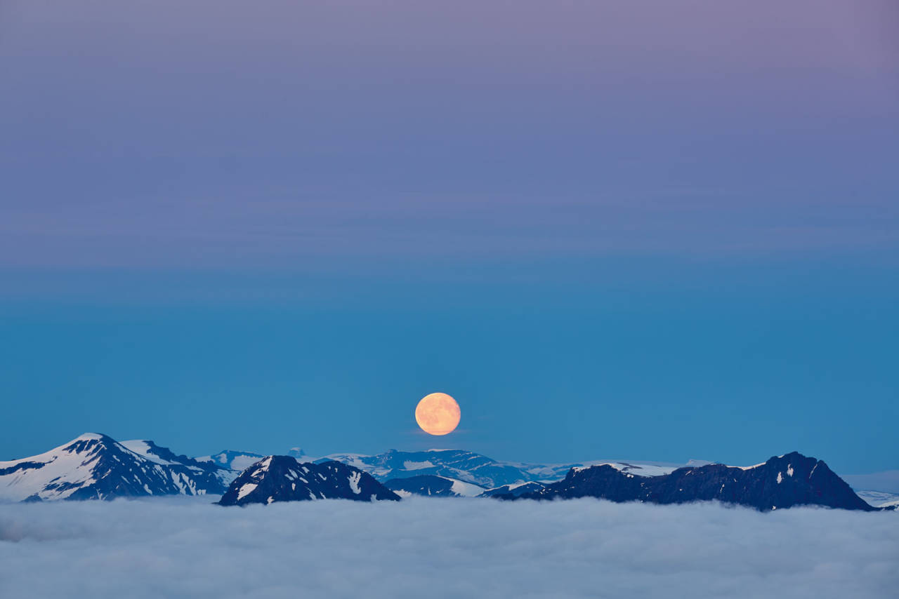 VÅKENETTER: Fullmånen viste seg fra sin beste side denne kvelden. Foto: Gunnar Wangen