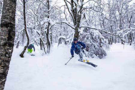 PLAN B: Lavtrykk og massivt snøvær gjør Brandstadskogen til et fullgodt alternativ til å dra opp i fjellet der sikten er dårlig. Foto: Terje Aamodt