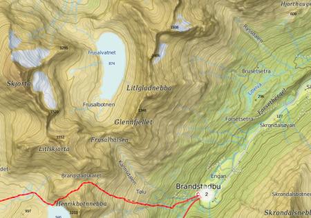 OMRINGET: Flere, mer besøkte og kjente fjell ligger i umiddelbar nærhet av Litjgladnebba. Sånn som for eksempel Skjorta.
