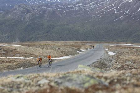 OPP TIL JUVASS: Finnes det en asfaltert bakke enhver klatrehelt fra Tour de France ville frykte? Asfalten er så som så, men vi har bakken opp til Juvass. Foto: Fra boka 71 bakker du må sykle i Norge