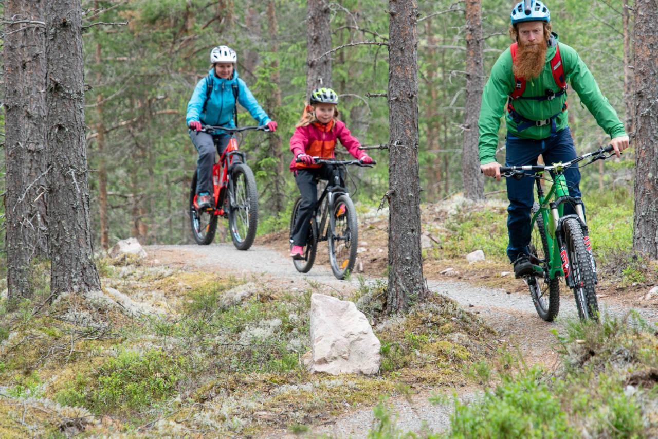 TERRENGSYKKELSKOLEN: Sykkelterapeut Aslak Mørstad