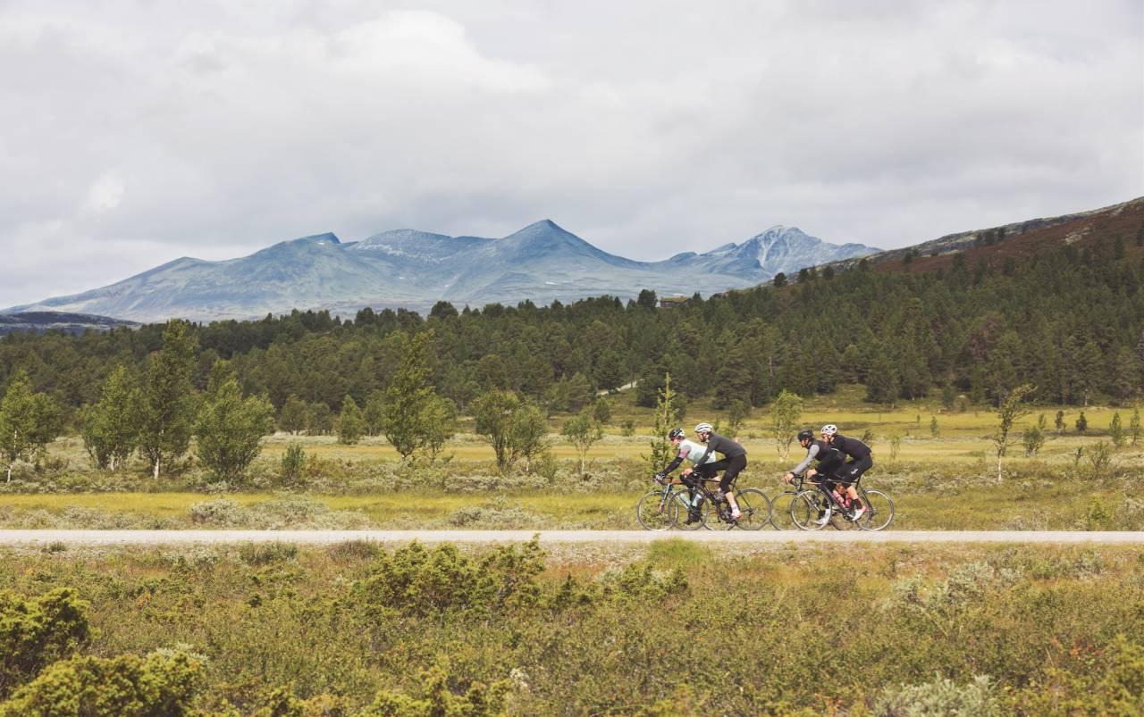 VESTVENDT: På vei gjennom Frydalen får du solen i ansiktet og utsikt til Rondane. Turens høyeste punkt er 1009 meter.