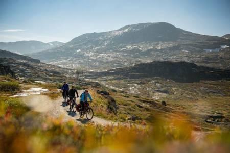 RALLARVEGEN: Sykling i disse omgivelsene kan inspirere hvem som helst til å utforske mer av områdene. Foto: Sverre Hjørnevik