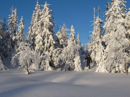 TEST AV FJELLSKISKO: Fjellskistøvlene er avgjørende for å få en fin skitur, og må gås inn og testes over tid. Pål Trygve Gamme har gjort jobben.