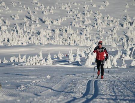 Test av klassiske skisko