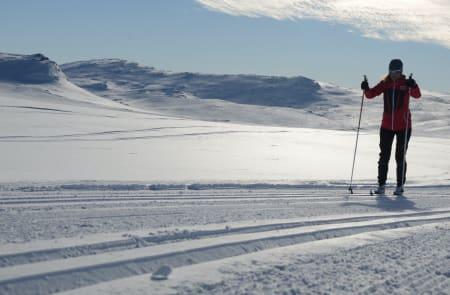 Naturtecserien fungerer til det meste av uteaktiviteter, som fjellskiturer, toppturer og i langrennssporet. Foto: Sandra L. Wangberg