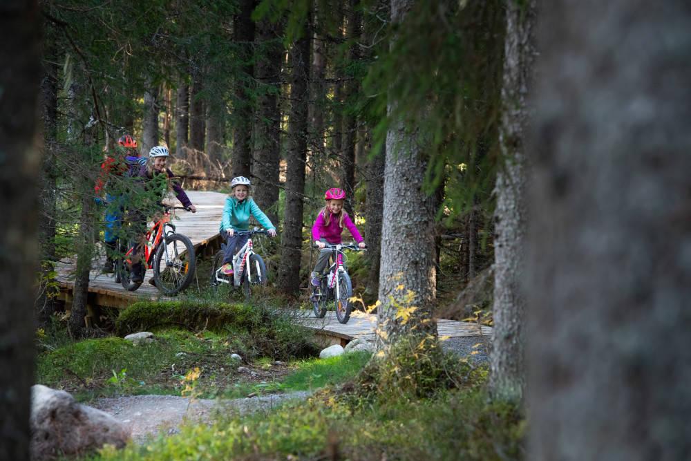 SYKKELSTIENE I TRYSIL: I Trysilskogene er det tilrettelagt for sykkelstier for både store og små sykkelentusiaster. Trysil har  investert nærmere 20 millioner kroner i sykkelstier, som gir mestringsfølelse, glede og kiling i magen.  Foto: Jonas Hasselgren