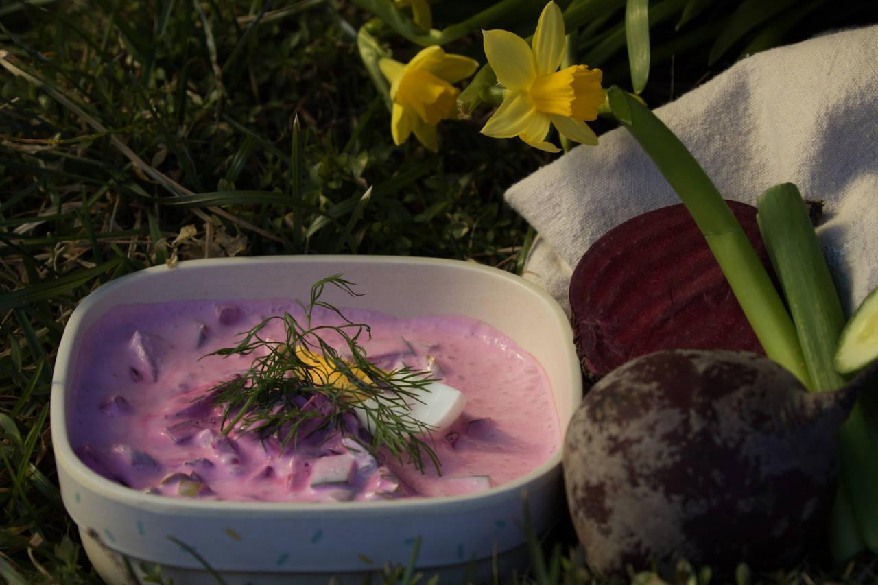 rødbetsuppe suppe på tur