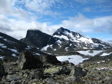 Sommer i fjellet? Her fra Jotunheimen i juli.