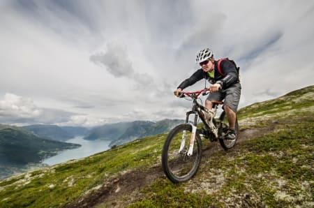 Fjell- og fjordmoro tilbyr busstransport slik at du kan komme deg opp i fjellet og fort ned igjen. Foto: Fjell- og fjordmoro