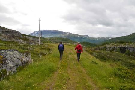 Erik Sørbye og Tine Schauer Eri på gjengrodde stier. Foto: Ida Eri Sørbye