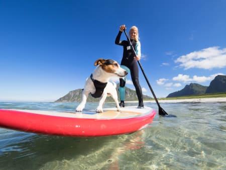 KAMERATER: Kitejenta Kari Schibevaag og hunden hennes Truls blir to gode fotoobjekter for fotografen. Bilde: Kristin Folsland Olsen